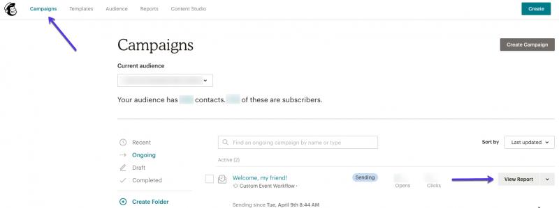 Báo cáo chiến dịch email tự động