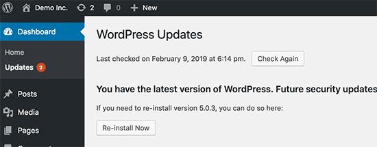 Cập nhật trang web WordPress thường xuyên