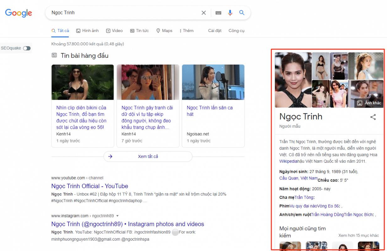 Bảng tri thức về người mẫu Ngọc Trinh